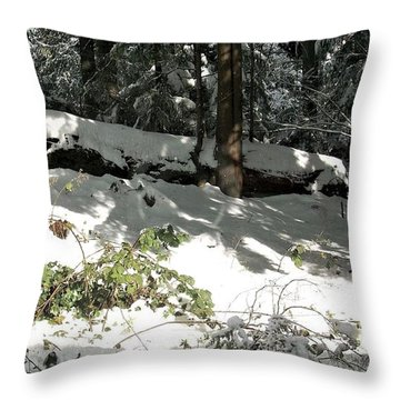 The Splendour Of Snow Throw Pillow