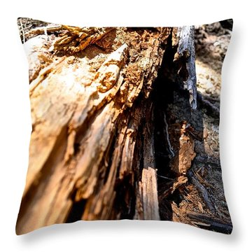 Splinter Throw Pillow
