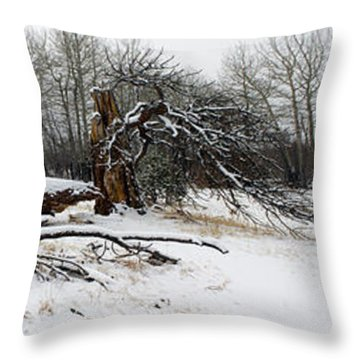 Throw Pillow featuring the photograph Split Personality - Panorama by Shane Bechler
