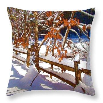 Split Rails Throw Pillow