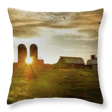 Split Silo Sunset Throw Pillow by Benanne Stiens