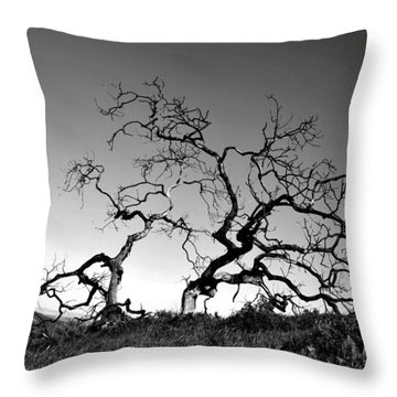Split Single Tree On Hillside - Black And White Throw Pillow