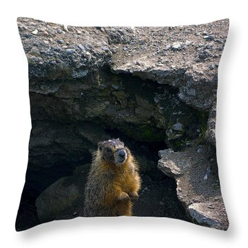 Spokane River Marmot Throw Pillow