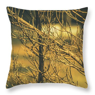 Spooky Country House Obscured By Vegetation  Throw Pillow
