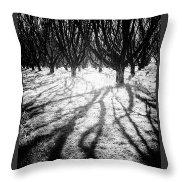 Spooky Forest Throw Pillow