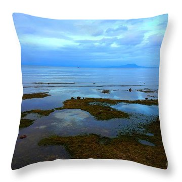 Spooky Morning Tide Receded From Beach Throw Pillow