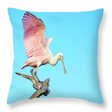 Spoonbill Flight Throw Pillow