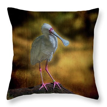 Throw Pillow featuring the photograph Spoonbill by Lewis Mann