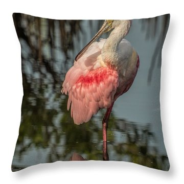 Spoonbill Resting Throw Pillow