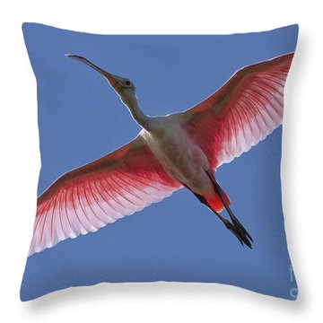 Spoonbill Soaring Throw Pillow