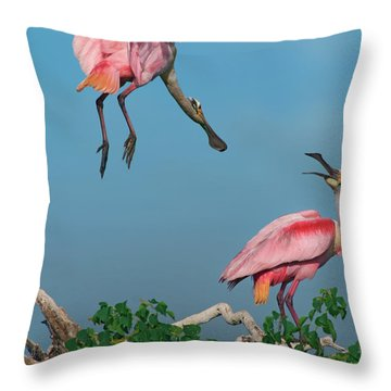 Spoonbills Greeting Throw Pillow by Tim Fitzharris
