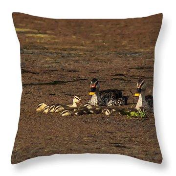 Spot Billed Duck Family  Throw Pillow by Ramabhadran Thirupattur