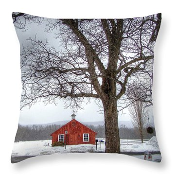 Spot Of Color Throw Pillow by Betsy Zimmerli