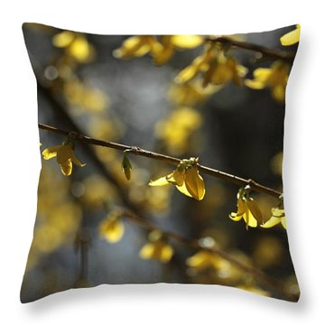 Throw Pillow featuring the photograph Spotlights  by Connie Handscomb