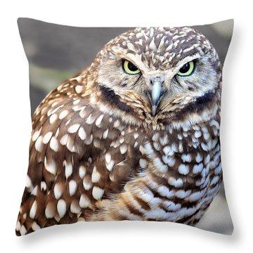Spots - Burrowing Owl Throw Pillow