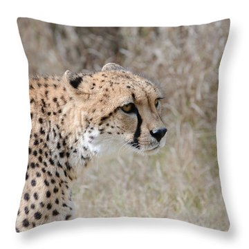 Throw Pillow featuring the photograph Spotted Beauty 2 by Fraida Gutovich