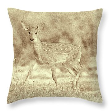 Spotted Fawn Throw Pillow by Jim Lepard