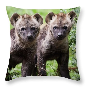 Throw Pillow featuring the photograph Spotted Hyena Cubs I by Nick Biemans
