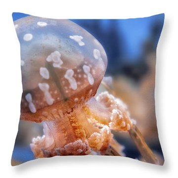 Spotted Lagoon Jellyfish Throw Pillow by Anthony Citro