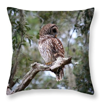 Spotted Owl Throw Pillow