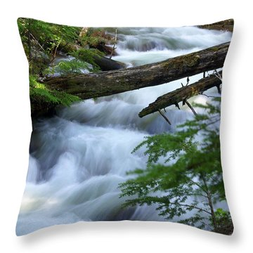 Sprague Creek Glacier National Park Throw Pillow by Marty Koch