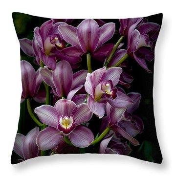 Spray Of Cymbidium Orchids Throw Pillow