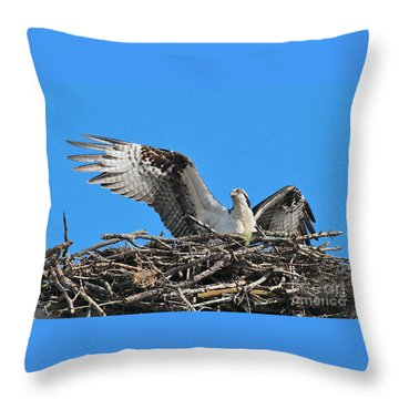 Throw Pillow featuring the photograph Spread-winged Osprey  by Debbie Stahre