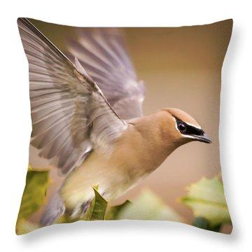 Spread Your Wings Cedar Waxwing  Throw Pillow
