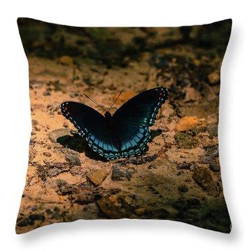 Spreadin My Wings Throw Pillow by Brenda Bostic