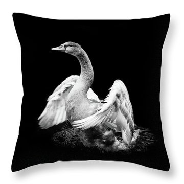 Spreading Throw Pillow