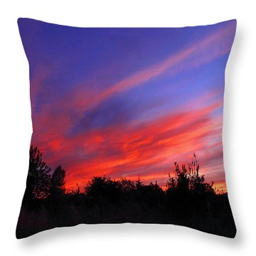 Throw Pillow featuring the photograph Spreading The Joy by Joyce Dickens