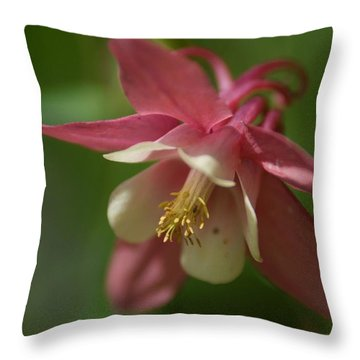 Throw Pillow featuring the photograph Spring 1 by Alex Grichenko
