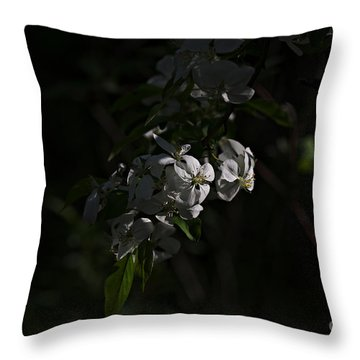 Throw Pillow featuring the photograph Spring 2016 10 by Cendrine Marrouat