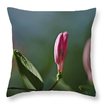 Throw Pillow featuring the photograph Spring 2016 12 by Cendrine Marrouat
