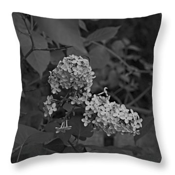 Throw Pillow featuring the photograph Spring 2016 16 by Cendrine Marrouat