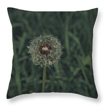 Throw Pillow featuring the photograph Spring 2016 18 by Cendrine Marrouat