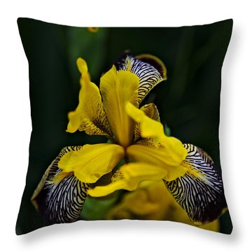 Throw Pillow featuring the photograph Spring 2016 19 by Cendrine Marrouat