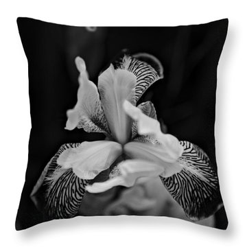 Throw Pillow featuring the photograph Spring 2016 20 by Cendrine Marrouat
