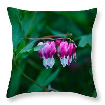 Throw Pillow featuring the photograph Spring 2016 21 by Cendrine Marrouat