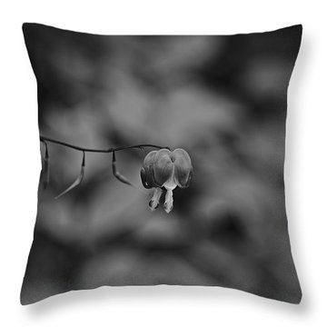 Throw Pillow featuring the photograph Spring 2016 24 by Cendrine Marrouat