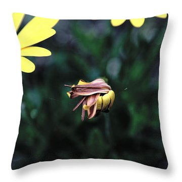 Throw Pillow featuring the photograph Spring 2016 26 by Cendrine Marrouat