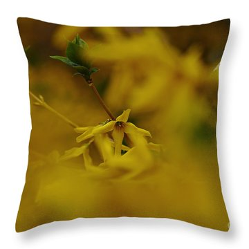 Throw Pillow featuring the photograph Spring 2016 7 by Cendrine Marrouat