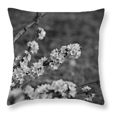 Throw Pillow featuring the photograph Spring 2016 9 by Cendrine Marrouat