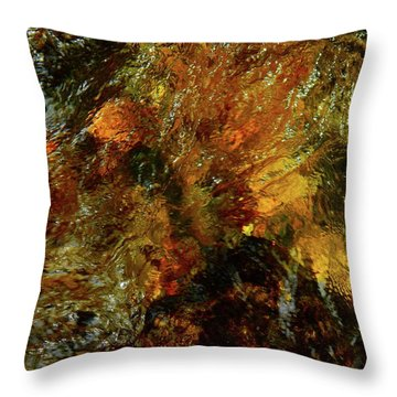 Spring 2017 108 Throw Pillow