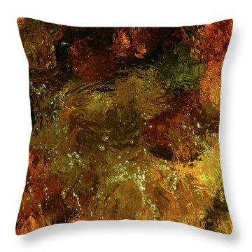 Spring 2017 46 Throw Pillow