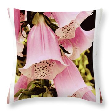Throw Pillow featuring the photograph Spring Assemblage Triptych by Jessica Jenney