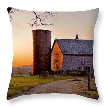 Spring At Birch Barn Throw Pillow
