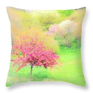 spring at Highland Park  Throw Pillow