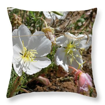 Spring At Last Throw Pillow