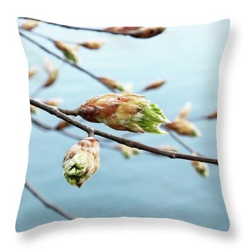 Spring At The Lake Throw Pillow by Karen Stahlros